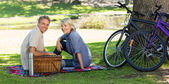 Couple with picnic basket in park — Stock Photo