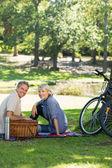 Couple enjoying picnic in park — Stock Photo