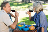 Couple drinking red wine in park — Stock Photo