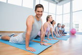 Group doing cobra pose in row at yoga class — Stok fotoğraf