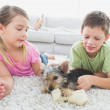 Siblings lying on rug with their yorkshire terrier puppy — Stock Photo #42932923