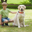 Boy with pet dog at park — Stock Photo