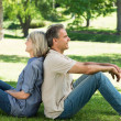 Couple sitting back to back in park — Stock fotografie #42934331