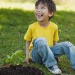 Cheerful boy besides young plant in park — Stock Photo #42937633