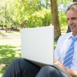 Mature businessman using laptop — Stock Photo