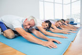 Portrait of fitness group bowing in row — Stock Photo