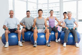 Fitness class with dumbbells sitting on exercise balls in gym — Stockfoto