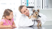 Veterinarian examining puppy with girl — Stock Photo