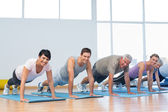 Group doing push ups in row at yoga class — Stock Photo