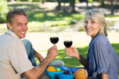 Couple toasting wine glasses in park — Stock Photo