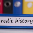 Credit history on blue business binder — Stock Photo #42988619