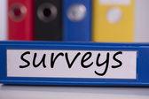 Surveys on blue business binder — Stockfoto