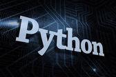 Python фоне футуристический черный и синий — Стоковое фото