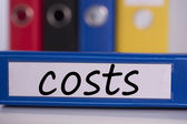 Costs on blue business binder — Stock Photo