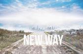 New way against stony path — Stock Photo
