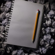 Graph paper notebook with pencil — Stock Photo #45107127