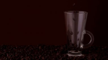 Coffee beans falling into glass — Stock Video