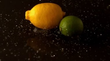 Lemon and lime dropping on wet surface — Stock Video