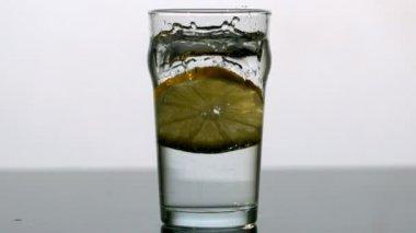 Lemon slice falling into pint of water — Stock Video