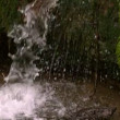 Waterfall flowing in the countryside — Vídeo de Stock #45181733