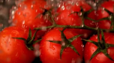 Water raining on cherry tomatoes — Stock Video