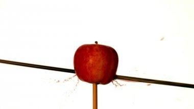 Arrow shooting through apple — Stock Video
