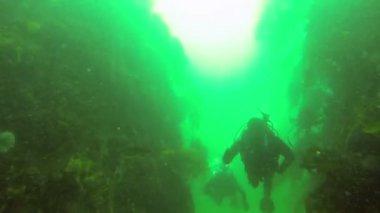 Two scuba divers swimming — Stock Video