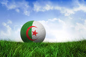 Football in algeria colours — Foto de Stock