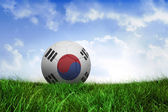 Football in south korea colours — Foto de Stock