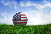 Football in america colours — Foto de Stock