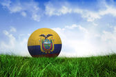 Football in ecuador colours — Foto de Stock