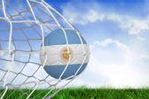 Composite image of football in argentina colours at back of net — Stock Photo