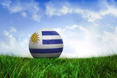Football in uruguay colours — Foto de Stock