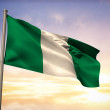 Composite image of nigeria national flag — Stock Photo #46751259