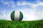 Football in nigeria colours — Foto de Stock