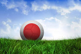 Football in japan colours — Foto de Stock