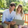 Couple on park bench looking at laptop — Stock Photo