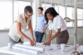 Architects working hard on plans — Stock Photo