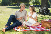 Couple drinking white wine on a picnic — Stock Photo