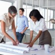 Architects looking at blueprints — Stock Photo #48233887