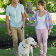 Couple with their labrador in the park — Stock Photo #48234977