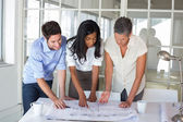 Three architects looking at blueprints — Stock Photo