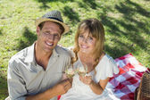 Couple drinking wine on a picnic — Stock Photo