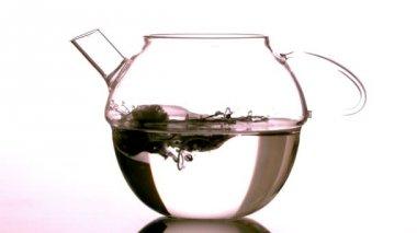 Teabag falling into glass teapot — Stock Video