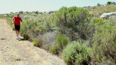 Man jogging through wild terrain — Stock Video