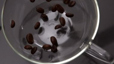 Coffee beans pouring into glass cup — Stok video