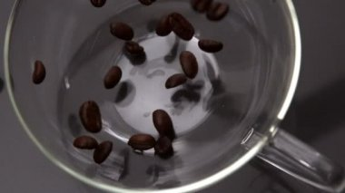 Coffee beans pouring into glass cup — Stock Video
