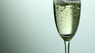 Bubbles rising in champagne glass — Stock Video
