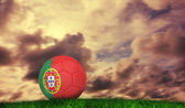 Voetbal in portugal kleuren — Stockfoto