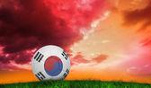 Fútbol en corea del sur colores — Foto de Stock